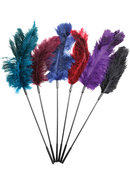 Fantasy Tickler Ostrich Feather Tickler Combo Assorted...
